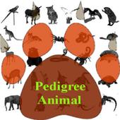 Pedigree of the Animal